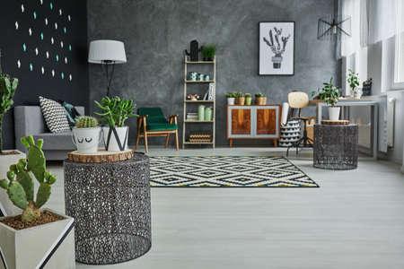 Flat met decoratieve metalen accessoires, cactus en vloerpanelen Stockfoto