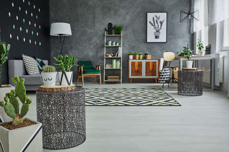 Flat with decorative metal accessories, cactus and floor panels