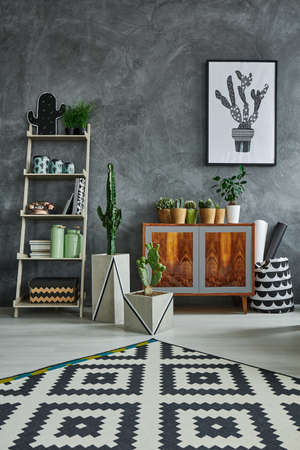 Grey room with ethnic dresser, carpet and cactus