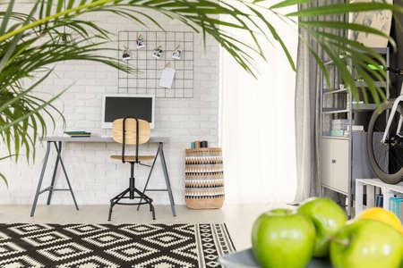 Lichte functionele flat met kantoorruimte en groene kamerplant