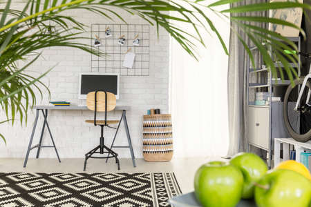 Light functional flat with office area and green houseplant Фото со стока