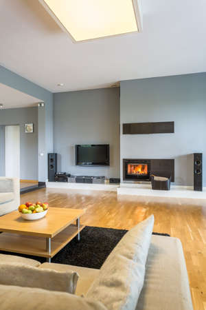 cosy: Little minimalist fireplace in spacious cosy living room