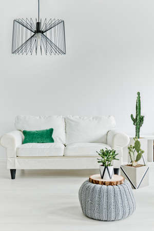 living room minimalist: Minimalistic living room with white furniture