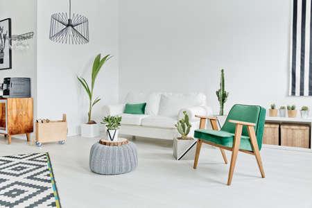 Ruime, goed verlichte flat in scandinavische stijl