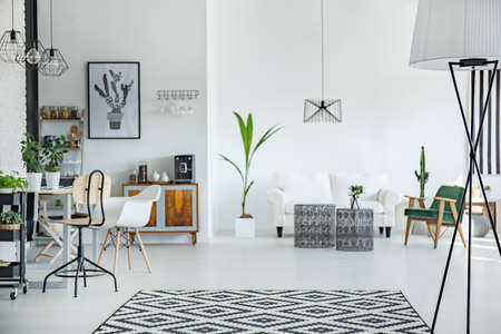 White and spacious multifunctional room