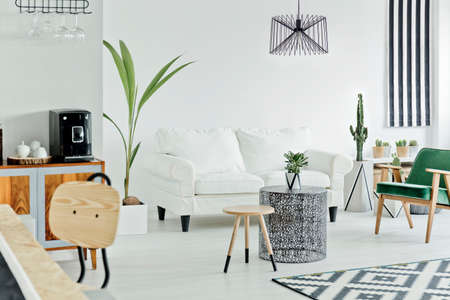 living apartment: Living room area of a cozy loft apartment
