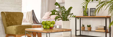 furniture home: Studio apartment interior with green and brown decorations