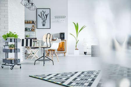 植物と白と広々 としたリビング ルーム