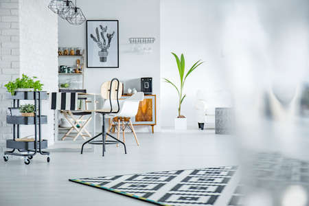 White and spacious living room with plants Stock Photo
