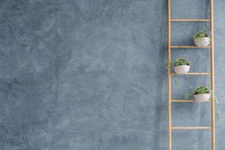 DIY hölzerne Blumenständer und graue Wand Stuck Standard-Bild - 70236655