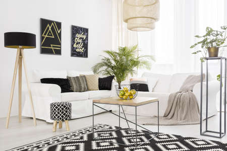 Black and white living room with sofa and pattern carpet