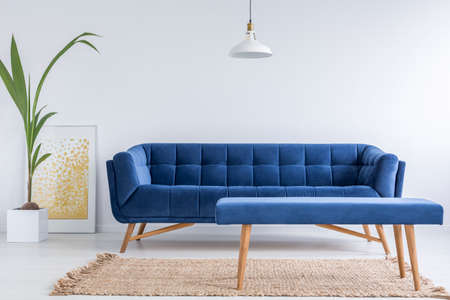 Witte appartement met blauwe bank, bank, tapijt en groene planten