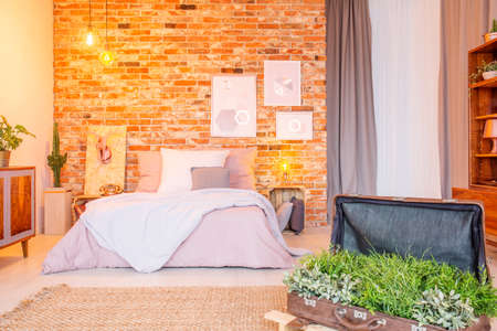 Warm bedroom with decorative green plants in vintage suitcase