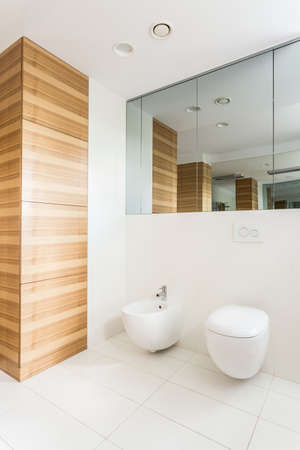 wainscot: Light white bathroom with wooden wainscot and toilet Stock Photo