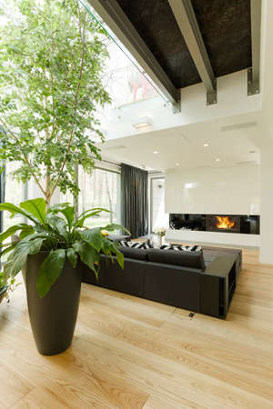 interior decor: Spacious and modern living room with sofa and fireplace