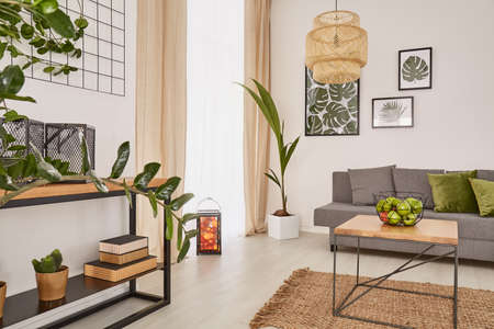 Room interior with plants and earthy colours Zdjęcie Seryjne - 71967917