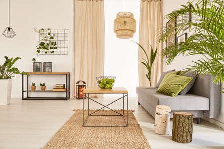 Goed verlichte flat interieur met planten en een bank Stockfoto