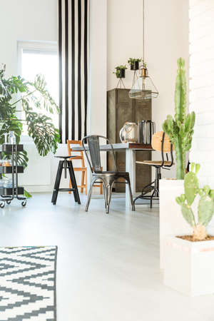 Bright home interior with table, chairs and cactus