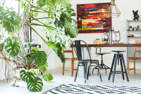 Modern, white dining room with monstera plant and wire lamp