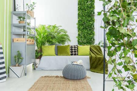 sala de estar con sofá botánico gris, almohadas verdes y librería Foto de archivo