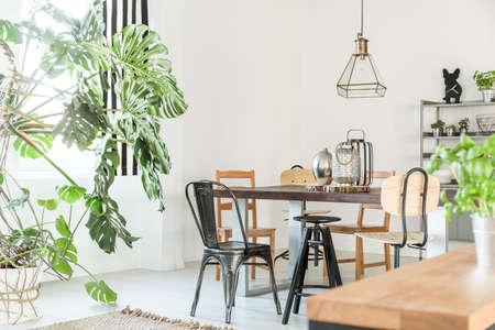 Luminosa sala da pranzo con tavolo, sedie, libreria e pianta verde Archivio Fotografico