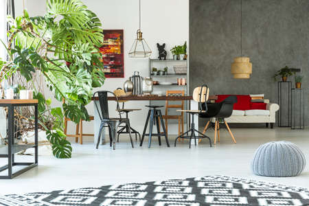 Bright, modern apartment with dining table, sofa, pouf and monstera Stock Photo