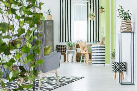 Trendige Wohnung mit grünen Pflanzen, Muster-Accessoires und grauem Sessel Standard-Bild