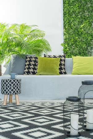 Salle moderne lumineuse avec canapé, accessoires de motif et plantes vertes