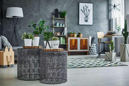 Stylish flat apartment with plants decoration Stock Photo