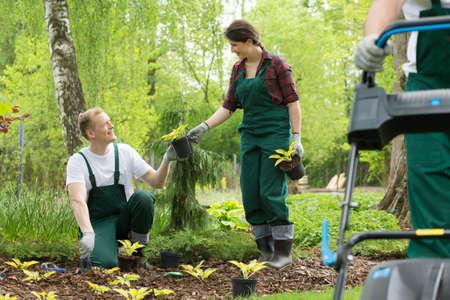Fröhlich Gärtner Blumen im Park zu pflanzen Standard-Bild - 73768588