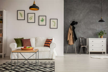 white interior: Grey and white apartment with couch, dresser and clothes stand