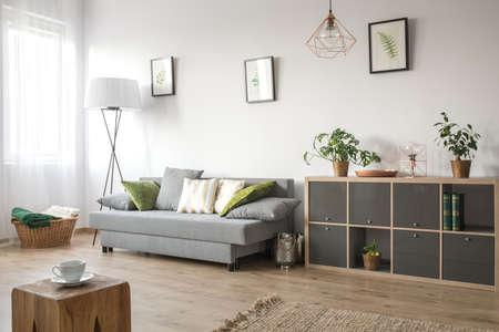 Accogliente soggiorno con divano, libreria e tappeto Archivio Fotografico - 75273050