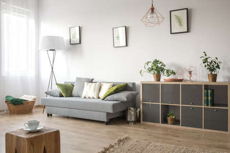Cozy living room with sofa, bookcase and rug Stockfoto