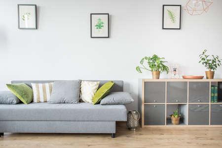 회색 소파, 장식용 베개 및 책꽂이가있는 거실 스톡 콘텐츠 - 75270891