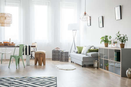 Bright living room with sofa, chair, table and green plants Stock Photo