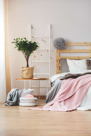 Cozy bedroom decorated with plant and lightbulbs