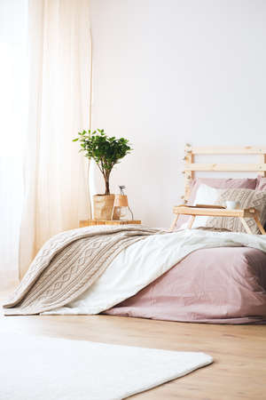 Bed and nightstand with plant in bright pastel bedroom