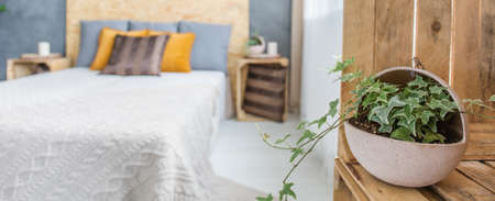 Plant in concrete flowerpot in modern bedroom with king-size bed