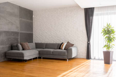 Cozy, grey living room with sofa, wood floor panels, plant Stock Photo