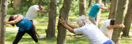 Elderly people stretching with their hands leaned on the trees Stock Photo