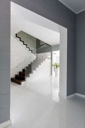 ascetic: Very ascetic anteroom with dark stairway and glass banister