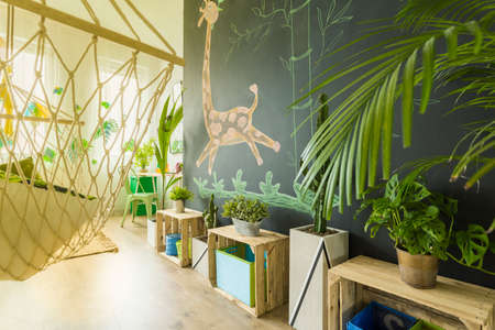 Hammock and blackboard wall in tropical themed children room