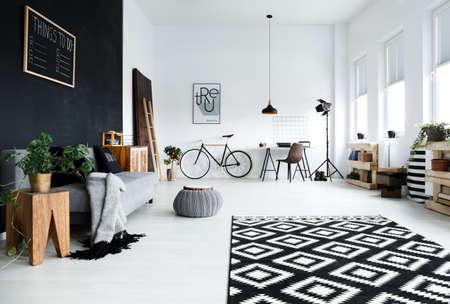 多機能、黒と白の部屋にソファ、植物、机、椅子 写真素材