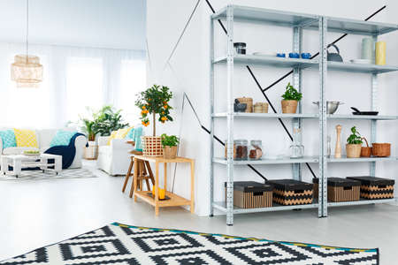 Black and white design of modern interior of living room