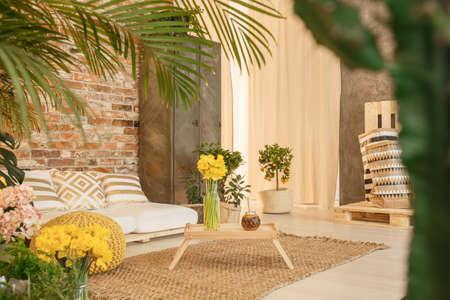 yerba mate: Pequeño jardín en la acogedora sala de estar con decoración de madera Foto de archivo