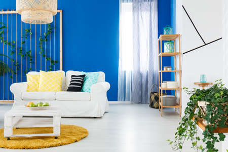 Plants in cozy modern designed living room in blue and white