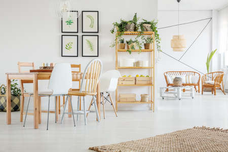White dining room with green plants, wood chair and table