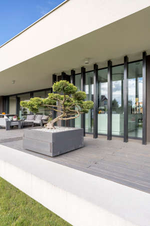 Villa exterior with decorative bonsai and window wall system Stock Photo