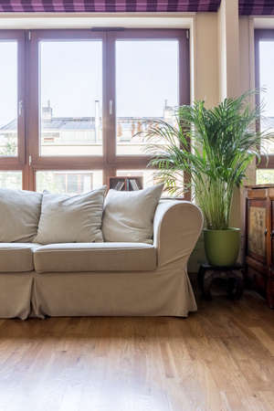 living room design: Bright living room with sofa, potted plant and big window
