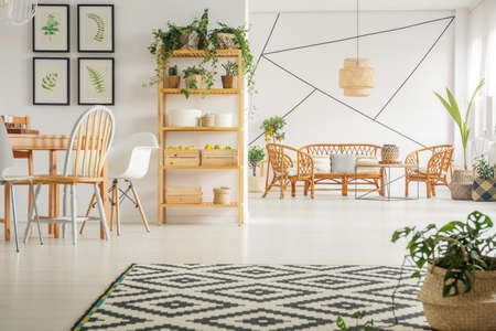 White apartment with pattern carpet, chair, table, bookshelf and plants